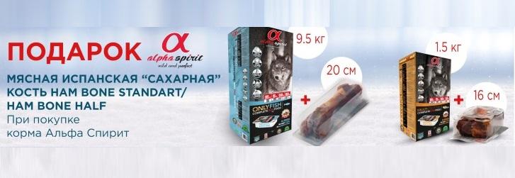 alpha spirit korm + kost