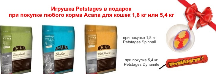 acana cat + petstages podarok