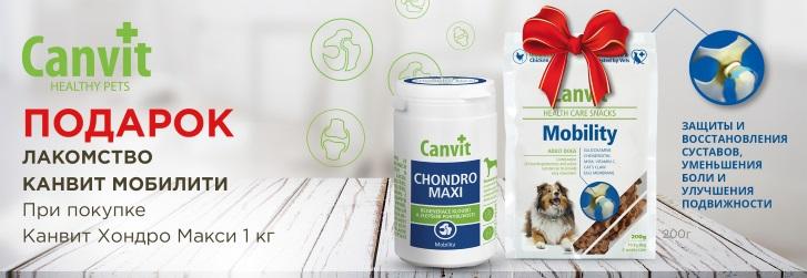 Canvit Chondro Maxi/Канвит Хондро Макси для собак (от 25кг