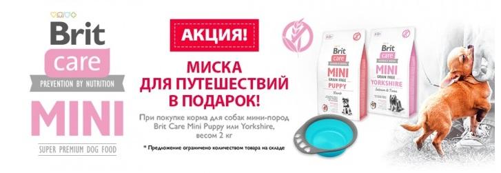 brit-care-mini-podarok
