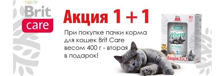 1+1 Brit care