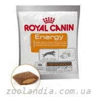Royal Canin (Роял Канин) повседневные корма Energy - Кр...