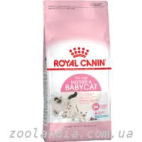 Royal Canin (Роял Канин) MOTHER BABYCAT - корм для котят