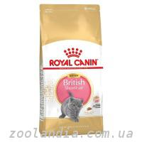 Royal Canin (Роял Канин) KITTEN BRITISH SHORTHAIR Корм ...