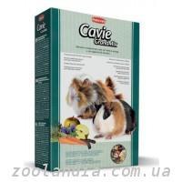 Royal Canin Vet Care Nutrition Kitten Food: