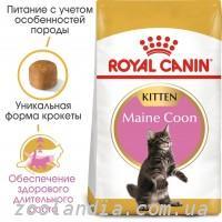 Корм для кошек Роял Канин Royal Canin купить в Москве –