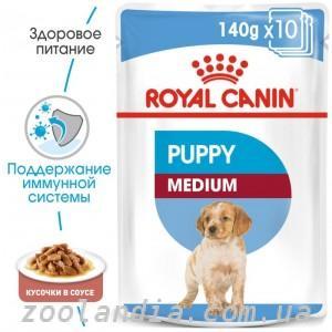 Лучший сухой корм для собак: отзывы ветеринаров