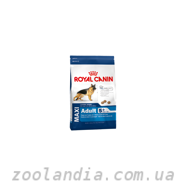 лежак royal canin