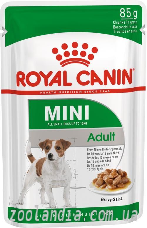 Акана корм для собак: Отзывы и подробный состав