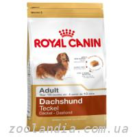 Royal Canin (Роял Канин) DACHSHUND - корм для такс