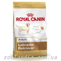 Royal Canin (Роял Канин) LABRADOR RETRIEVER - корм для ...