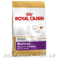 Royal Canin (Роял Канин) MALTESE - корм для собак породы мальтезе (мальтийская болонка)
