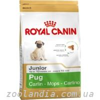 АКЦИЯ! Royal Canin (Роял Канин) PUG JUNIOR корм для щен...
